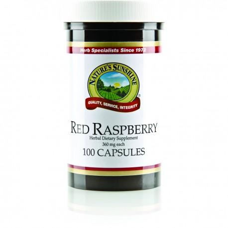 Red Raspberry (100 cap)