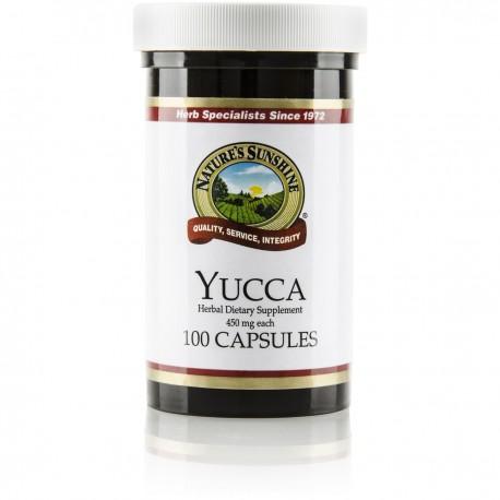 Yucca (100 cap)